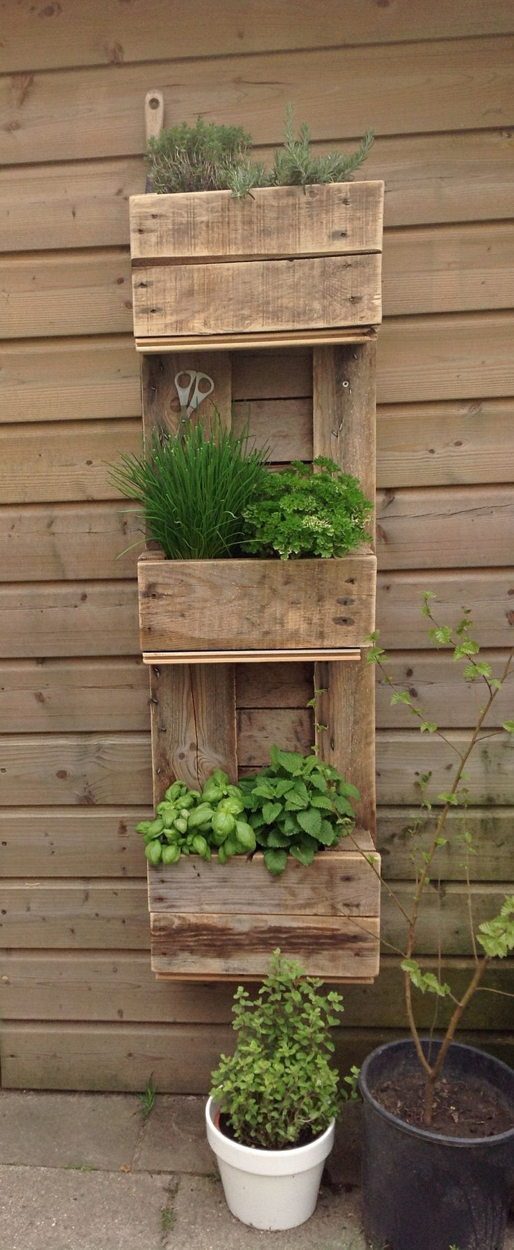 Build a vegetable garden box - Best 25 Box Garden Ideas On Pinterest Vegetable Garden Box Garden Beds And Vegetable Planter Boxes