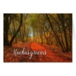 Gracias Spanish Thank You Woodland Path with Oaks Card