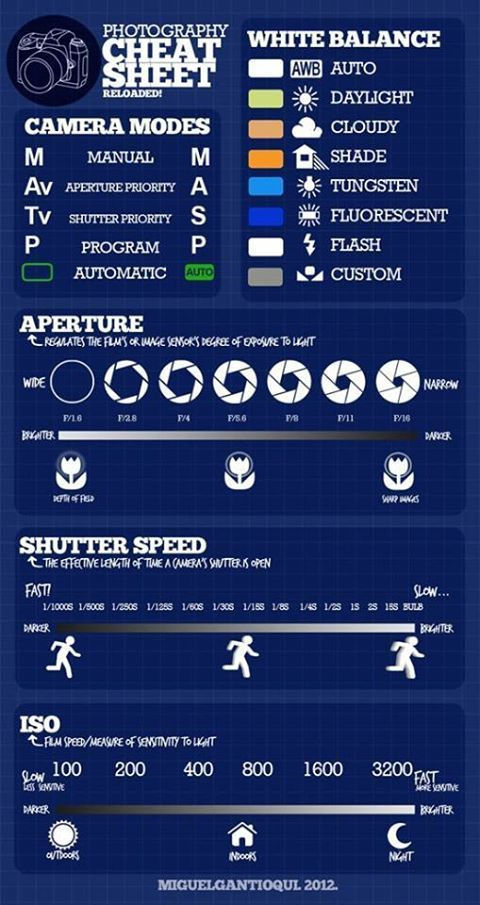 1000+ images about Photography Infographics on Pinterest | Time ...