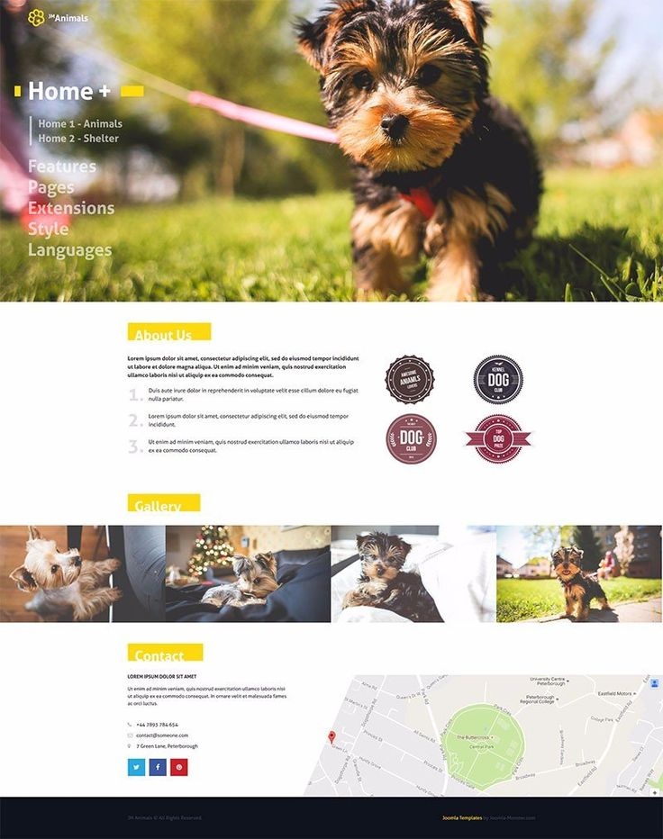 JM Animals -  wonderful Joomla animals template designed for pet and animal websites.  #animals #Joomla #templates #template https://www.joomla-monster.com/joomla-templates/i/224-jm-animals
