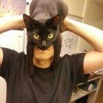 Batman ou un maître et son chat?