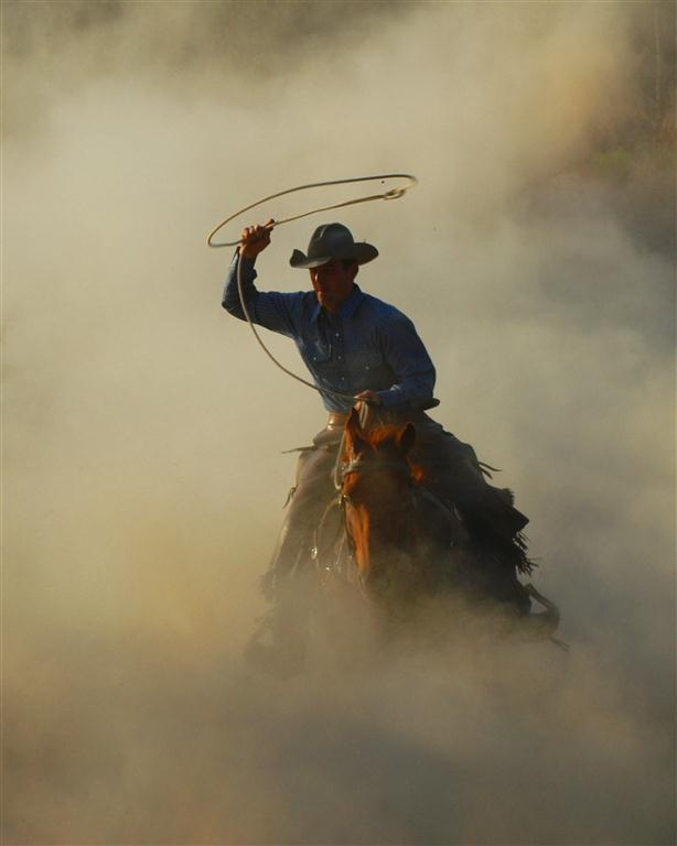 Stampede Dust Storm. There's just something about a Cowboy.....
