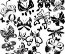Butterflies templates vector   Vector Graphics Blog