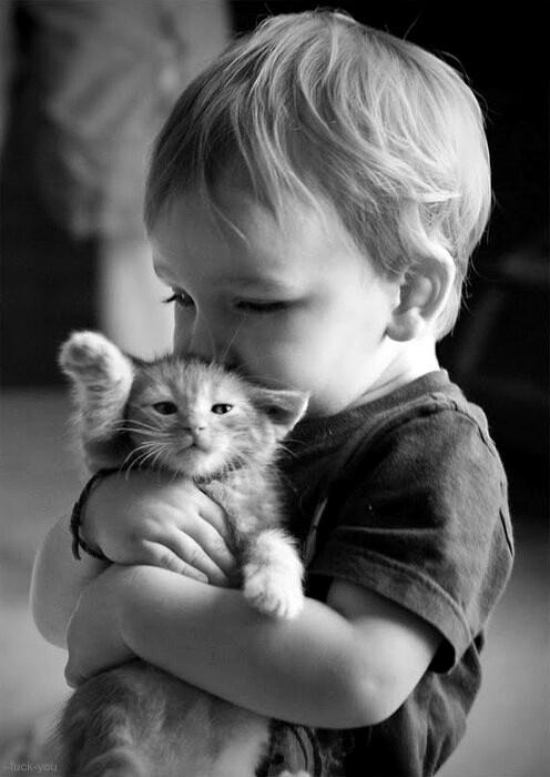 Bébé et bébé chat #MontRoucous