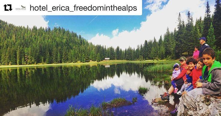 Camminare con l'Hotel Erica per scoprire sempre nuovi posti e nuovi laghi per la gioia dei bambini! #hotelericawalking #hotelericafiemme #freedominthealps #valmaggiore #lagocece #freedom  #Repost @hotel_erica_freedominthealps