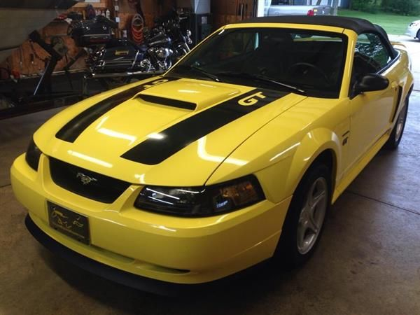 1000 ideas about used mustangs for sale on pinterest used mustang shelby gt and ford. Black Bedroom Furniture Sets. Home Design Ideas