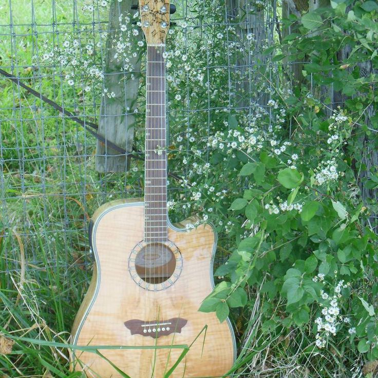 Washburn acoustic guitar spalted maple top, Gorgeous!