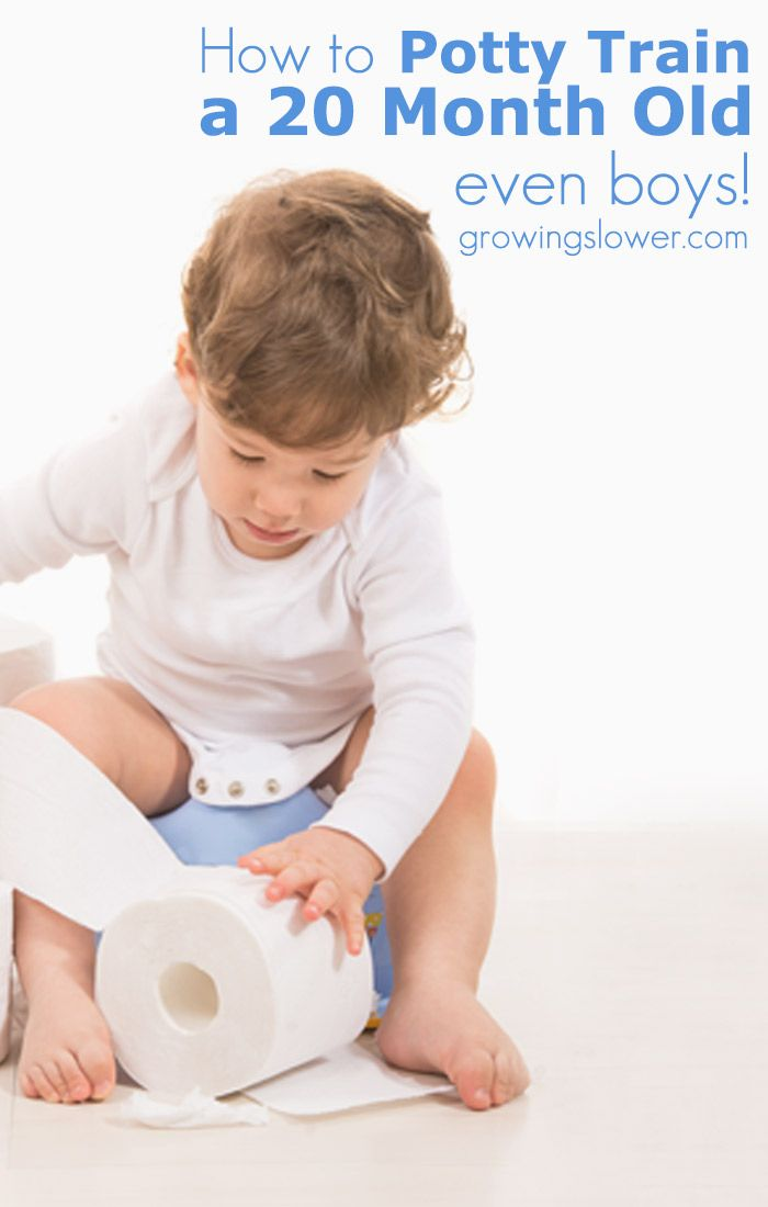 How to Potty Train a 20 month Old (yes, even boys!) - Early potty training is a great way to save hundreds on diapers. Before you start potty training, save yourself the stress of other potty training methods that just don't work, and read this first! This really works. The article explains in detail everything from the night-before preparation, to ditching the diapers the first day, and self-initiation. This method of potty training works great for kids as young as 20 months and on up.