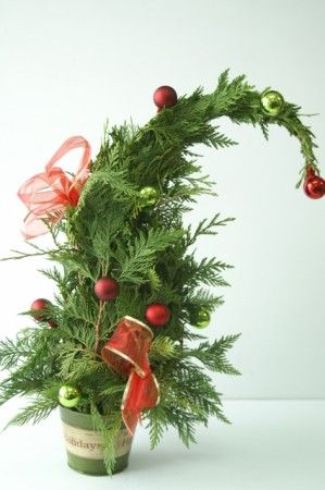 Janice S Grower Direct Christmas Flowers Office Christmas Decorations Christmas Arrangements