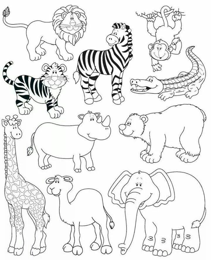 animales de la selva állatok animals раскраски рисунки