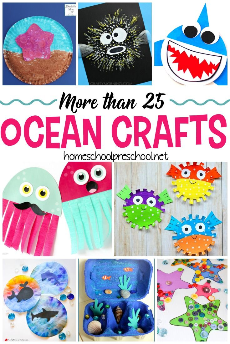 630 best Under the Sea/Beach Themed Ideas images on ...