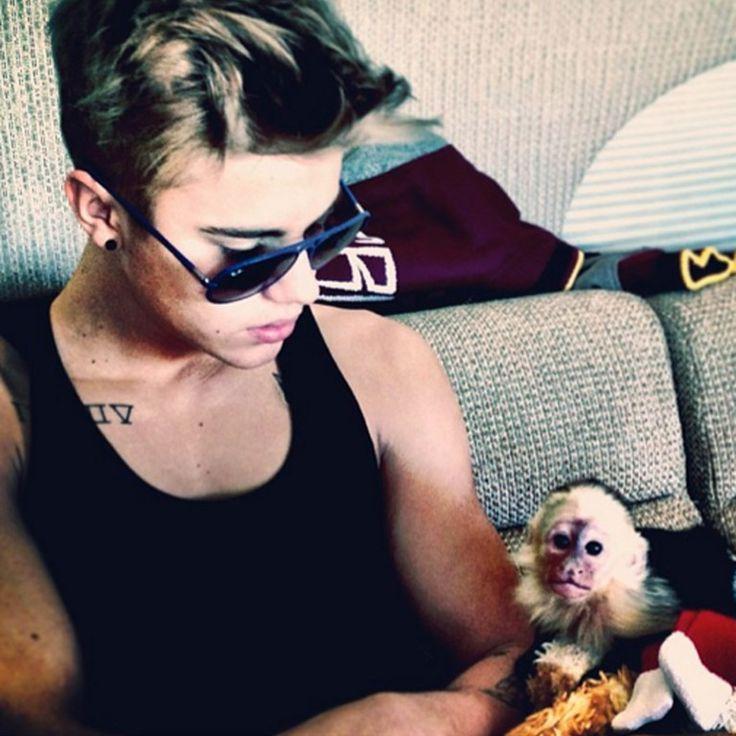 Ofrecen a Justin Bieber viaje gratis a Costa Rica para que desista de comprar monos