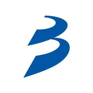 国際武道大学のロゴ:その名は「B ウェイ」。国際武道大学のシンボルマーク   ロゴストック