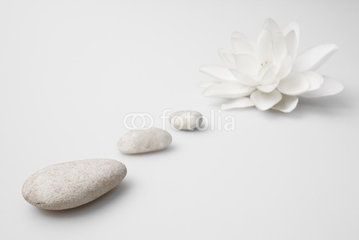 wellness still life pebbles and white lily