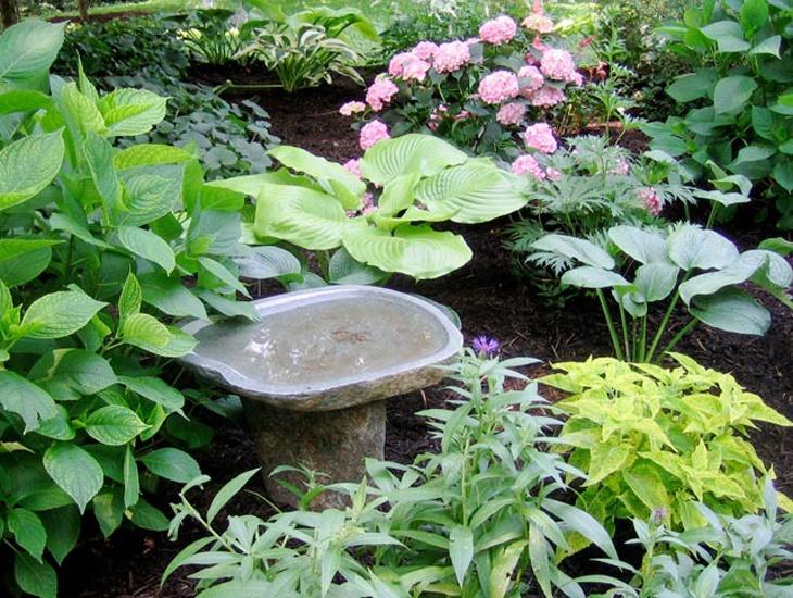 Shade garden with birdbath