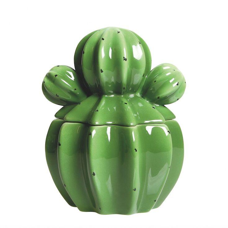 Bocal Cactus de My Little Day