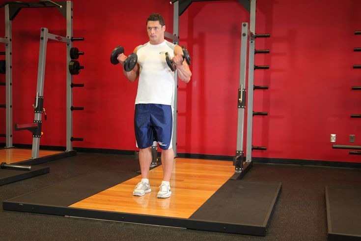 Chest & Arms, Day 2&5: Dumbbell Bicep Curl