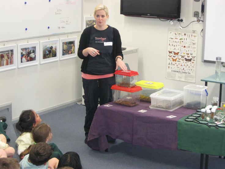 Menai Primary School students eager to find out what's in the box!