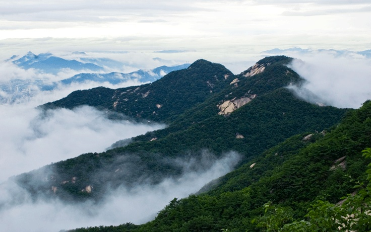 MT.SURAK  어느 여름날 수락산,   특별히 시간 내어 다녀오는 산이 아니라, 언제라도 달려가 쉴 수 있는  나에겐 늘 친구 같은 그런 산이다.: Spaces, Favorite Places, Vacation, 내어