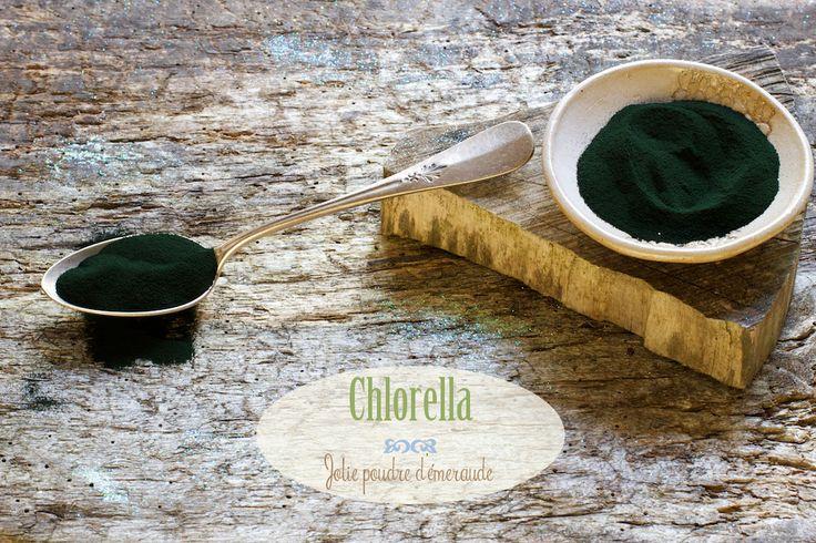 Les bienfaits de la chlorella du Chaudron Pastel - Naturopathie & superaliments