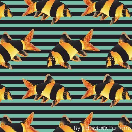 My Tiger Fish (turqose stripes)