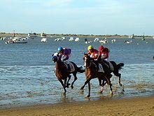 Las Carreras de caballos de Sanlúcar son una competición hípica que se celebran anualmente en la playa del municipio español de Sanlúcar de Barrameda, en Andalucía. Están declaradas Fiesta de Interés Turístico Andaluz, Nacional e Internacional.