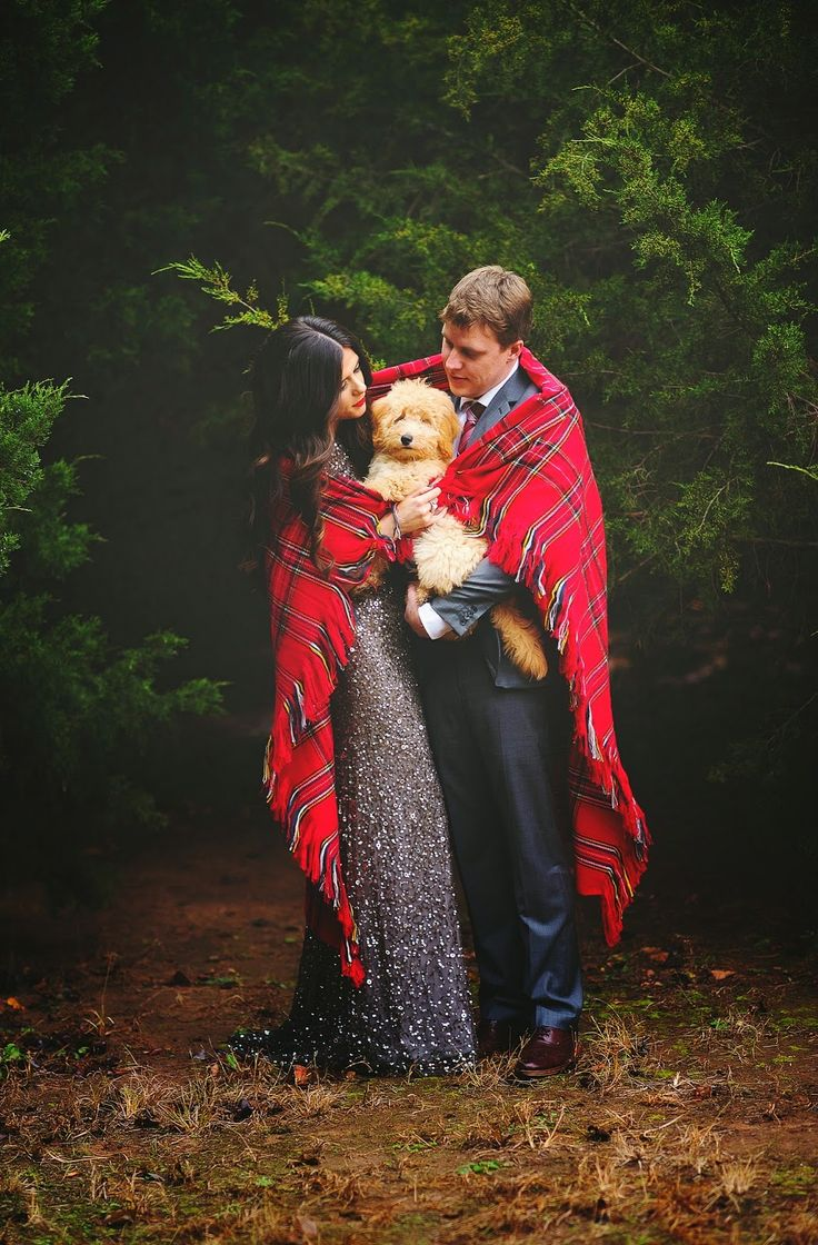 christmas photo ideas for couples merrygoround - 25 best ideas about Dog christmas pictures on Pinterest