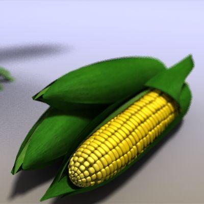 Corn 3D Model Download | obj max 3ds mb lwo c4d - 3D Squirrel