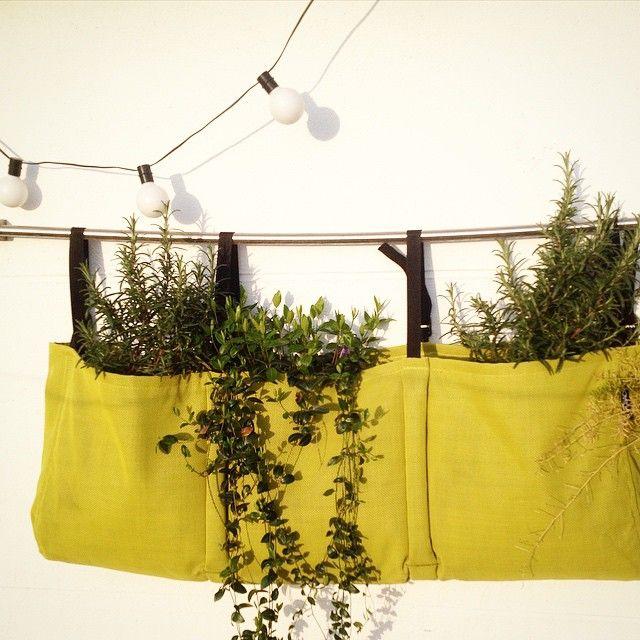 Une jardini re accroch e avocado install e sur une barre for Creer un mur vegetal