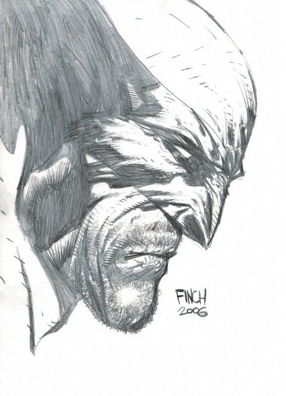 Wolverine by David Finch....Mystic loves those pencils hee hee.