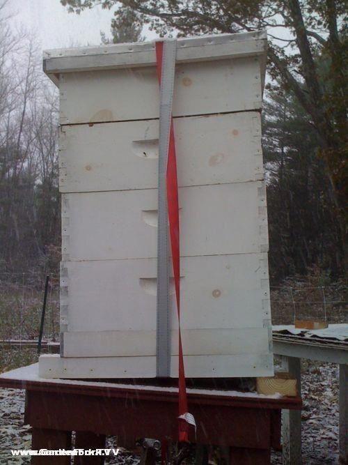 Preparing Beehives for Winter Condensation is a very common killer - condensation dans la maison