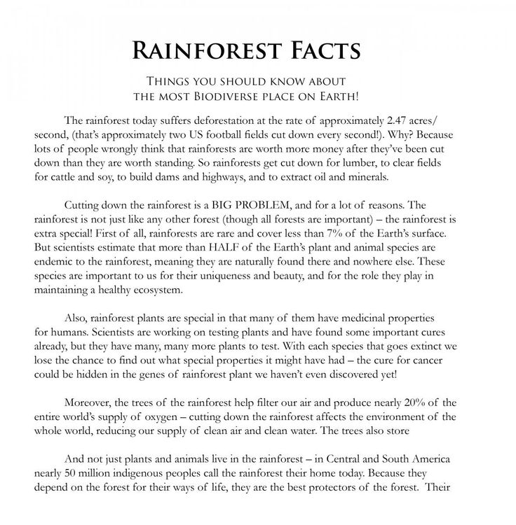 Best 25+ Rainforest games ideas on Pinterest | Jungle theme ...
