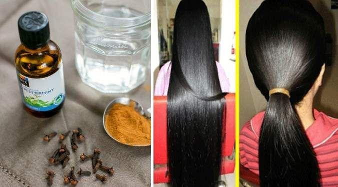 فوائد القرنفل للشعر ودوره في تقوية وتطويل وزيادة كثافة الشعر موقع مصري Cinnamon Sticks Spices Food