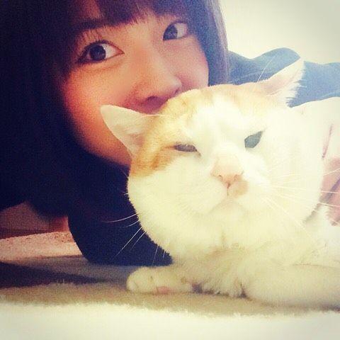 R.I.P. Nekotaro Part6 He is watching you from heaven😽 ぬんとぅんが亡くなった次の日から叔父さんの家にそっくりの猫が舞い込んで来て🐈、うんとぅんがどこかで見てくれてるから色々頑張らなきゃと言ってるかなとも、慈愛に満ちた心温かい人だなと朝から思いました。 . おはようございます。今日も1日頑張ろう! #juicejuice #金澤朋子 #かなとも #ハロプロメンバー猫 #ハロメン猫 #愛猫 #ぬんとぅん #猫太郎 #ぶさかわ #ぶさかわ猫 #野良猫 #里親 #ご冥福をお祈りします  #おはようございます  #今日も1日頑張りましょう #cat #cutecat #chubbycat #rip #weloveyou  #goodmorning #haveagoodday  #tomokokanazawa