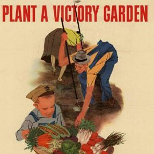 Best 25 victory garden ideas on pinterest garden netting strawberry beds and family of five for What was the goal of victory gardens