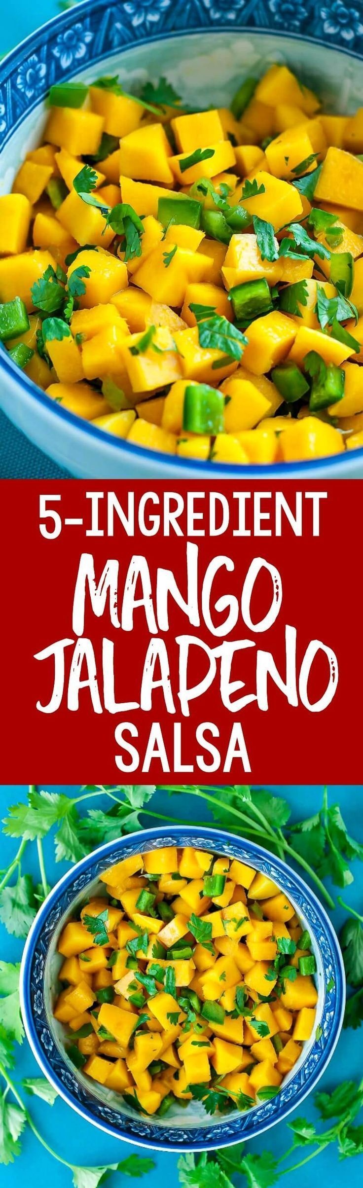 This Easy 5-Ingredient Mango Jalapeño Salsa is a crazy delicious way to amp up the flavor of your favorite foods. Try it on top of fish or chicken, salads or tacos, or dive in with some crunchy tortilla chips as a tasty snack!