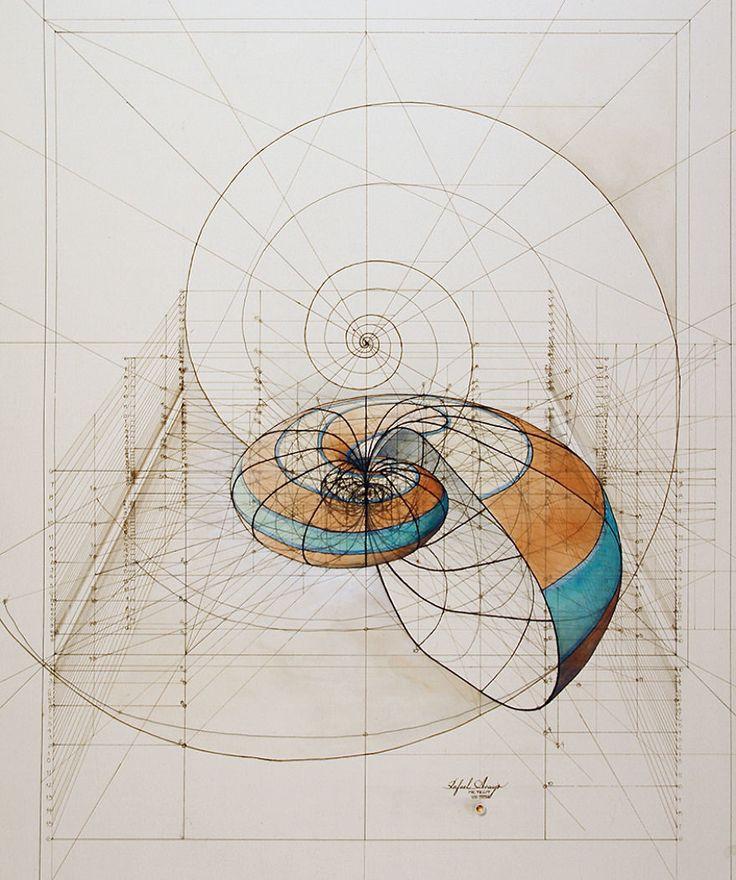 [Image]   Fibonacci Coloring Book Celebrates the Mathematical Beauty... - TIMEWHEEL