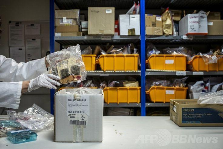 フランス東部のエキュリ(Ecully)にある国立科学警察研究所(Institut National de Police Scientifique、INPS)で、証拠品が封入された袋を手にする薬物班の職員(2014年6月19日撮影)。(c)AFP/JEFF PACHOUD ▼26Jun2014AFP|科学捜査の現場、仏国立科学警察研究所 http://www.afpbb.com/articles/-/3018672 #Institut_National_de_Police_Scientifique