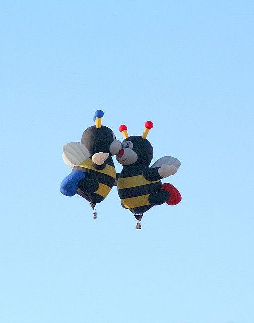 Kissing Bees | Beebo | Pinterest