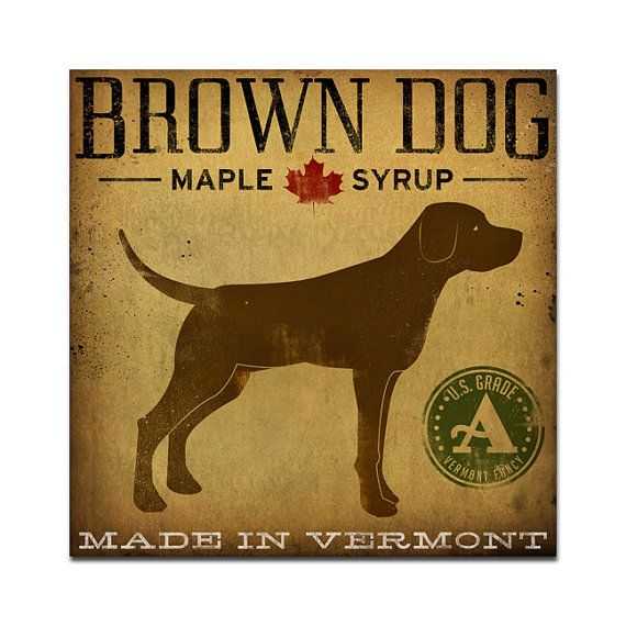 Chocolate lab -- Brown Dog Maple Syrup Archival Pigment by nativevermont