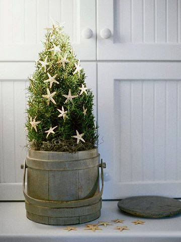 Topiary Christmas Tree  --  Delicate starfish on a rosemary topiary mimic traditional stars while suggesting a seaside locale. Tucked into an old oak bucket, the shrub marries country cottage and beach cottage styles with panache.