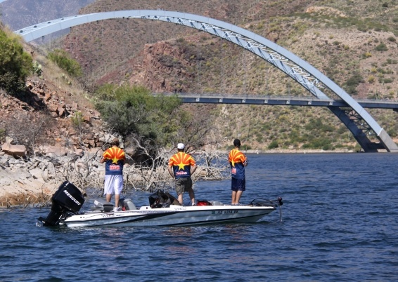 1000 images about fishing in the southwest on pinterest for Azgfd fishing report