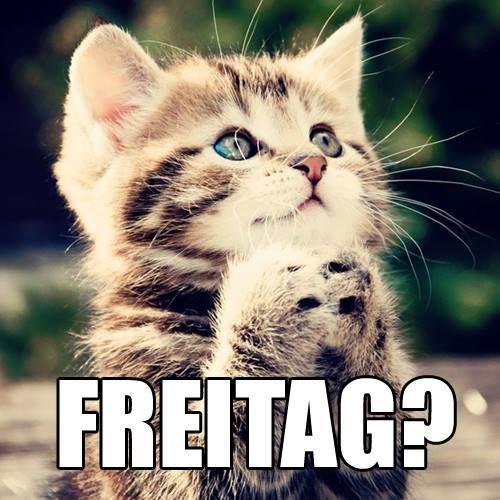 Weitere lustige Memes findest du hier: www.joiz.de
