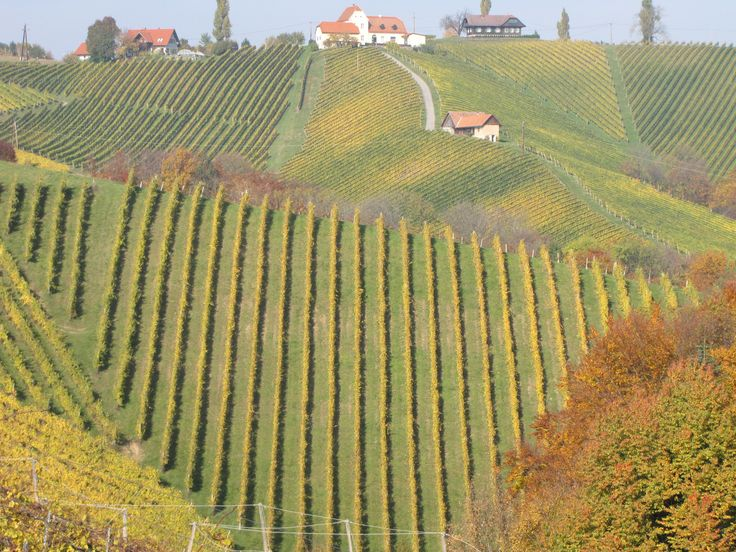 Südsteiermark Österreich South-StyriaAustria