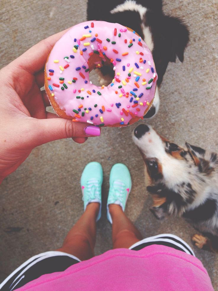Donuts + Dogs, a.k.a our two face things!