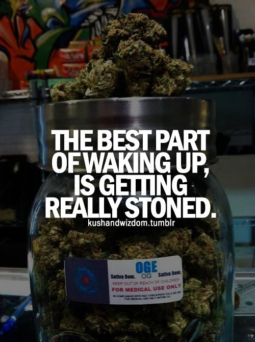 I want to wake up every day to a nice fat blunt. Follow Weed Dude on Pinterest for more marijuana fun! http://www.pinterest.com/weeddude/