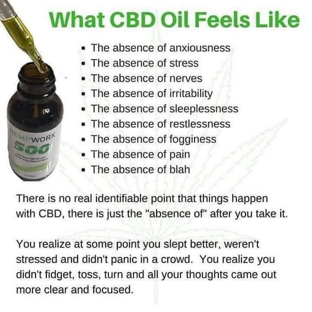 What is CBD oil? A beginner's guide to ...