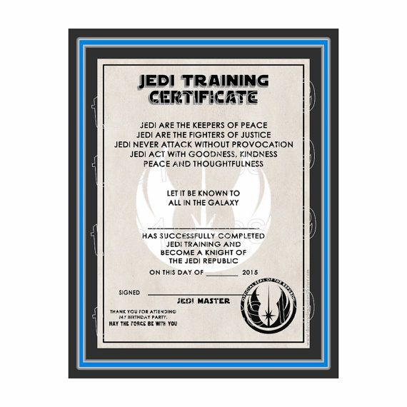 Best 25+ Training certificate ideas on Pinterest Jedi games - sample training certificate