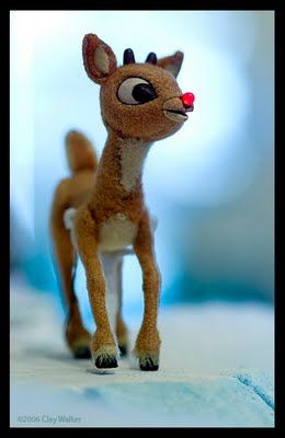Rudolph.  Loved this as a child, sharing it with my daughters and now my granddaughters.