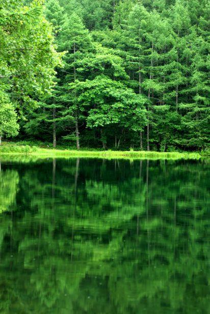 Lake Mishaka in Nagano, Japan 御射鹿池